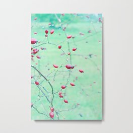 Red Berrys on light Green Ground Metal Print
