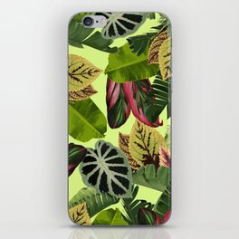 El Yunque iPhone Skin