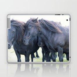 DARTMOOR PONIES Laptop & iPad Skin