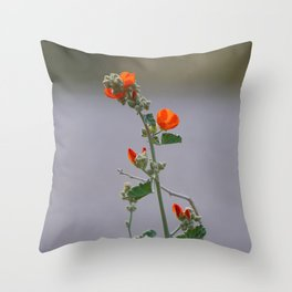 Desert Wildflower - 3 Throw Pillow