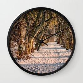 DE-Laupheim : Plane tree`s Wall Clock