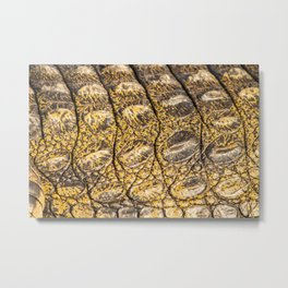 Crocodile Contradiction Metal Print