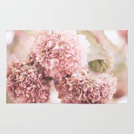 dusty pink Rug