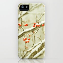 Hawthorne I iPhone Case