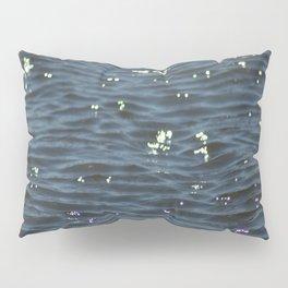 Marsh Waters Pillow Sham