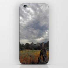 The big Picture iPhone & iPod Skin