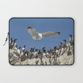Seagull hovering over birds Laptop Sleeve