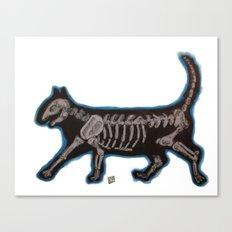 Skeleton Cat Canvas Print