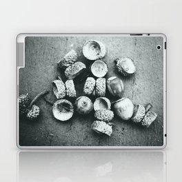 Acorns Laptop & iPad Skin