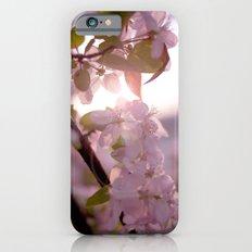 Sunlit peak iPhone 6s Slim Case