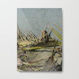 Palm Frauns Metal Print