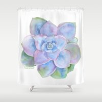 succulent Shower Curtains featuring Succulent by Susan Windsor