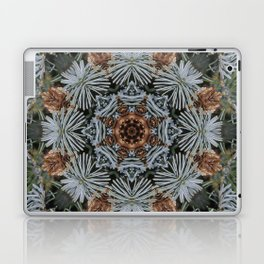 Spruce Cones And Needles Kaleidoscope K4 Laptop & iPad Skin