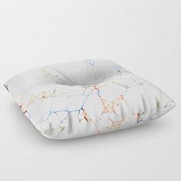 Marbled Blue Veins Floor Pillow