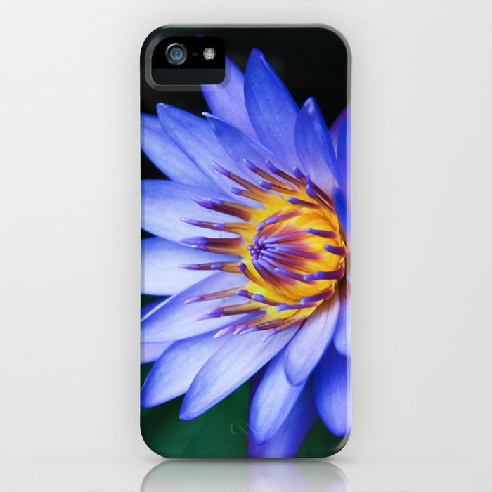 Tropical Dreams iPhone Case