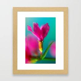 magenta buds Framed Art Print