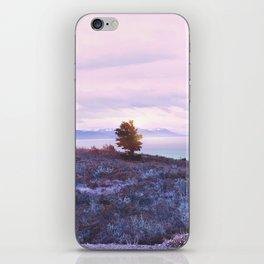 Pastel vibes 76 iPhone Skin