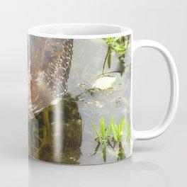 Young Green Heron Coffee Mug