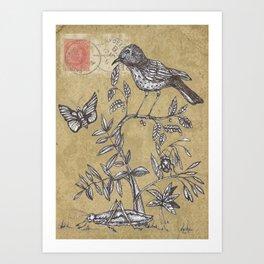 Vintage Birds and Bugs Art Print