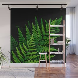 Fern Fronds on Black Wall Mural