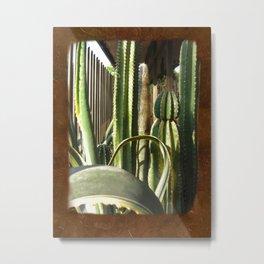 Cactus Garden Blank P3F0 Metal Print