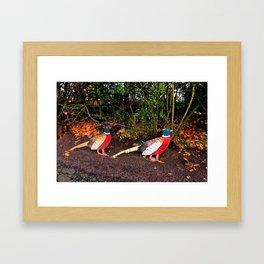 Two Pheasants On The Sidelines Framed Art Print