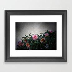 flowers on prospect ave. Framed Art Print