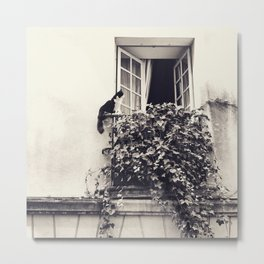 Paris Cat Metal Print
