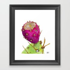 Prickly Pear Cactus Fruit Framed Art Print