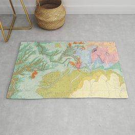 Southwest Map - Pastel Rug