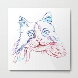 Fluffy Tuxedo Cat Metal Print