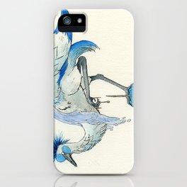 Aquarius iPhone Case