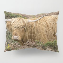 Highland Lad Pillow Sham