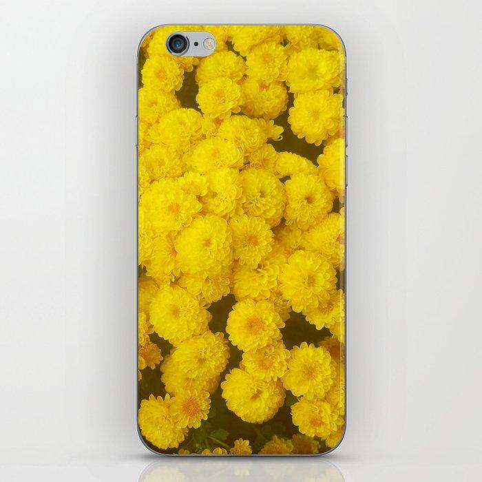 Autumn Gold - Chrysanthemums iPhone Skin