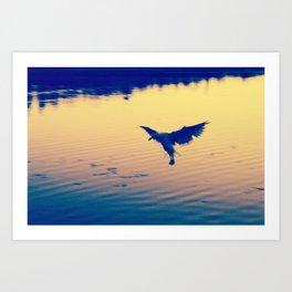 I Love You Seagull Art Print