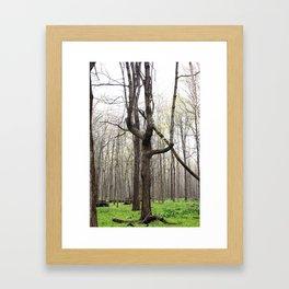 W tree Framed Art Print