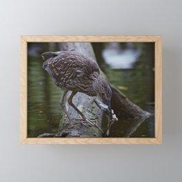 Heron Hunt Framed Mini Art Print