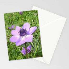 One Delicate Pale Lilac Anemone Coronaria Wild Flower Stationery Cards