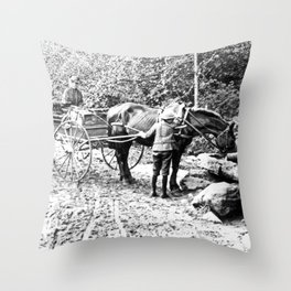 Vintage Adirondacks: The Roadside Watering Trough Throw Pillow