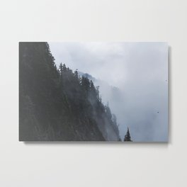 Fogged in Forest Metal Print