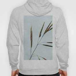 Beachgrass Seed Hoody
