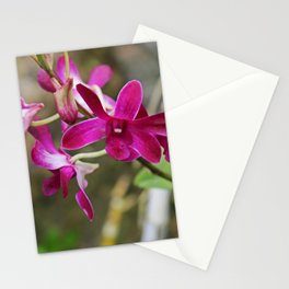 Swallow Your Fears Stationery Cards