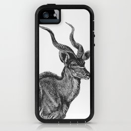 two kudu iPhone Case