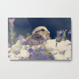Chicks and Flowers Metal Print