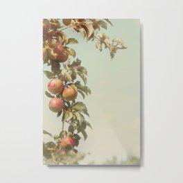 The Orchard Skies Metal Print