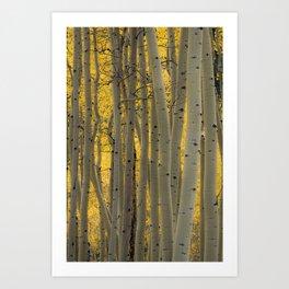 Aspen in Autumn - Vertical Art Print