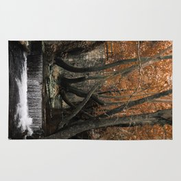 Forest with waterfall Rug