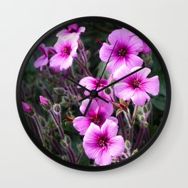 Beauty on The Rock Wall Clock