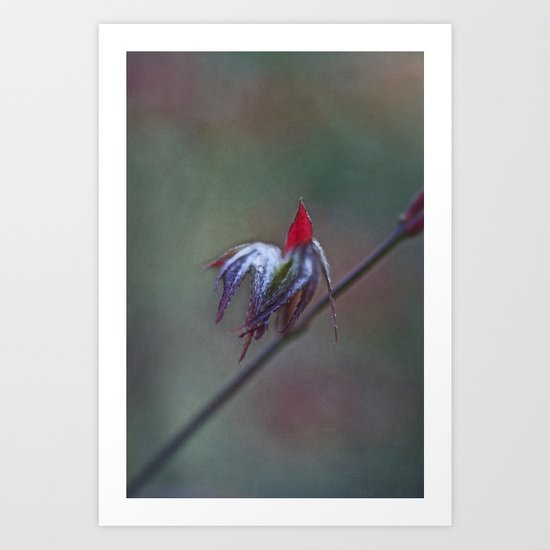 Ready for take off Art Print