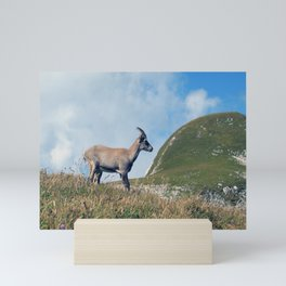 Ibex while hiking Mini Art Print